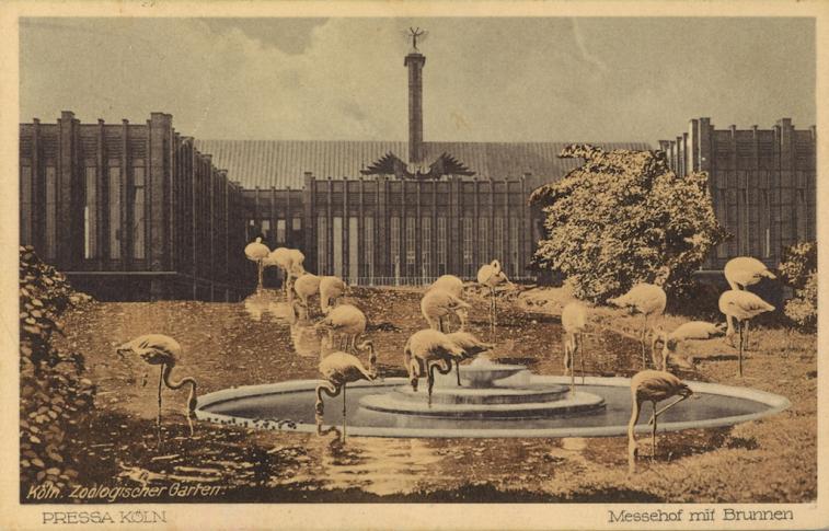 museum_koelnische_flamingo.jpg
